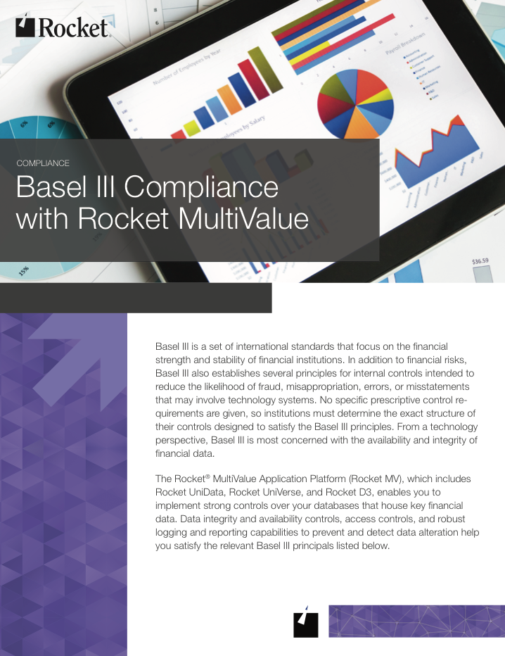 Rocket MultiValue for Basel III Datasheet