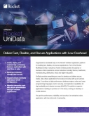 Rocket UniData Datasheet